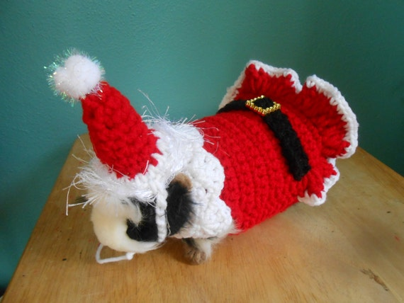 Knitting Patterns For Guinea Pig Clothes : Cochon dInde pull vetements de cobaye Santa Costume