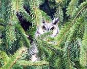 Printable, Natural Owl Portrait - 4 Sizes, Art, Nature Photography