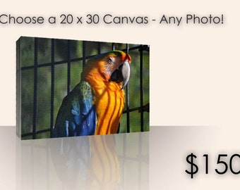 Choose any 20x30 Canvas Gallery Wrap