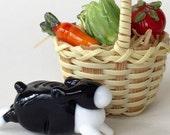 Little bunny's Garden picnic