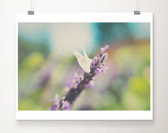 white butterfly photograph, insect photograph animal photography butterfly print summer photograph english garden photograph