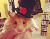 Gentleman Gents Top Hat modeled by Cashew the Hamster