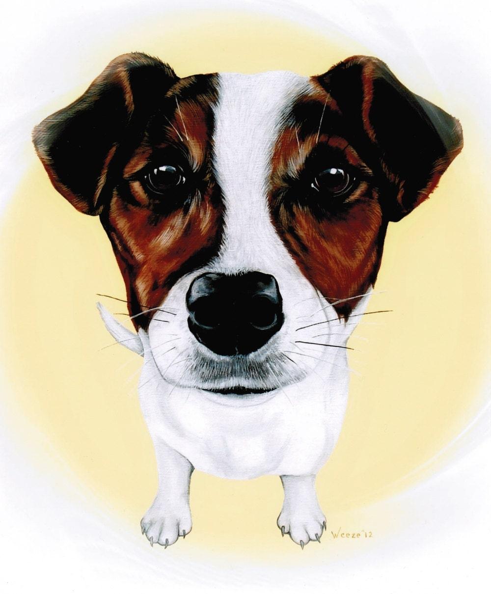 Jack Russell Terrier Jack Russell Jack Russell Art By