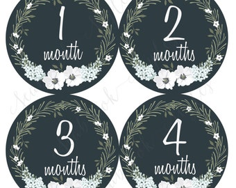 Monthly Onesie Sticker - Black & White Laurel Wreath - 1 to 12 months