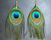 Peacock Feather Earrings Gold or Silver Plated Blue Swarovski Crystals Iridescent Feathers
