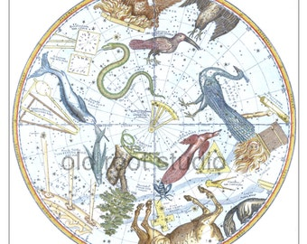 Hand Painted Map of the Stars, Southern Constellations 1856 / Map of the Constellations, Southern Hemisphere / Southern Constellations