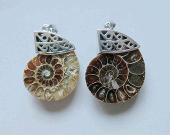 Ammonite fossil pendant B965