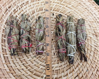 Small Yerba Santa Smudge stick ~ 1 small yerba santa bundle approx 3~4.5 inches, wild harvested, Reiki infused