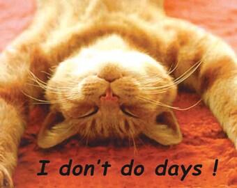 Don't Do Days Ginger Cat Fridge Magnet 7cm by 4.5cm,
