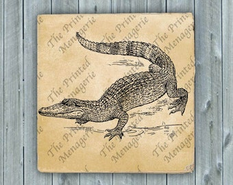 Alligator Crocodile Digital Download for collages fabric iron on T-shirt transfer burlap pillows Vintage image Instant printable Clip Art