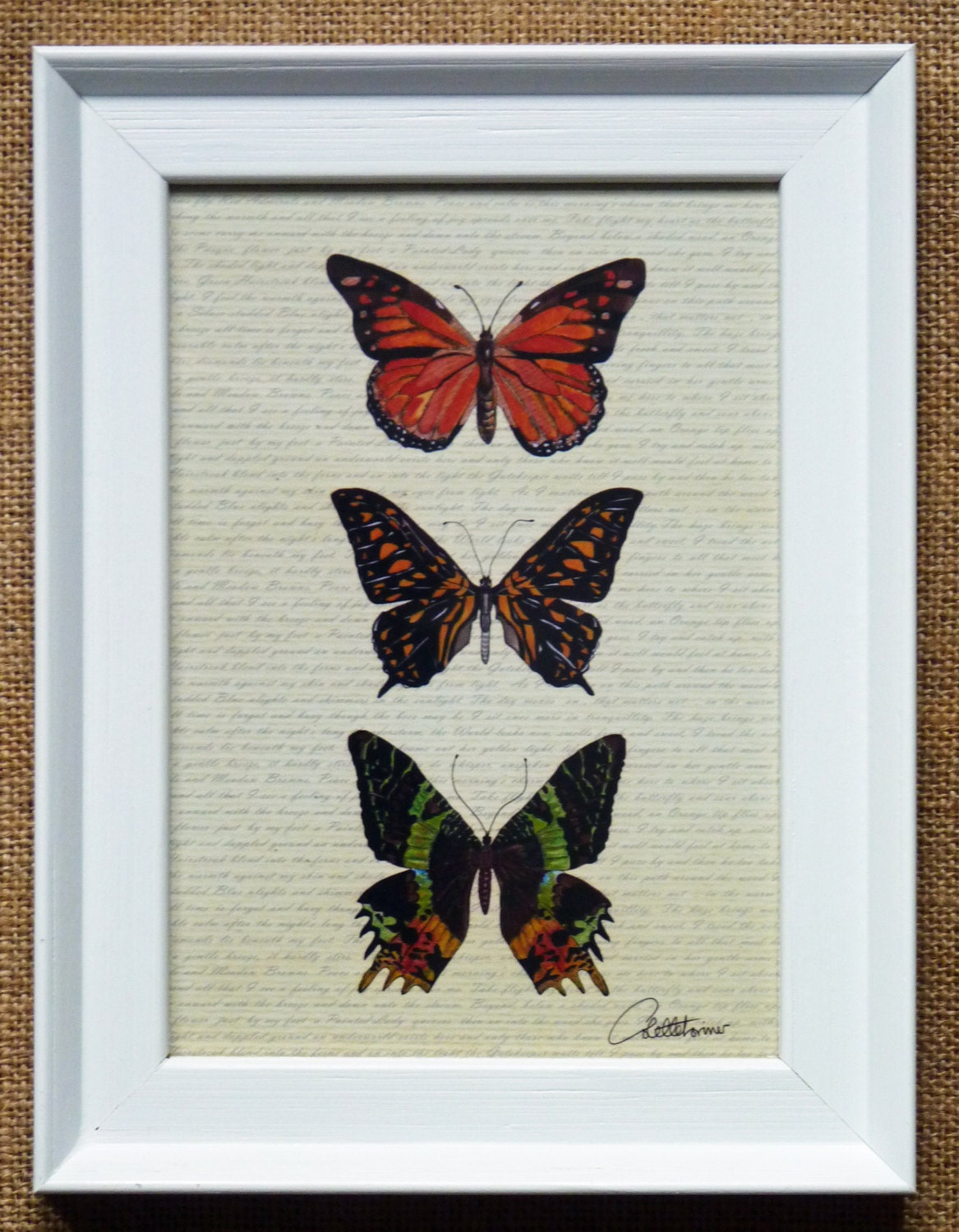 Butterfly wall art butterfly picturebutterflies framed a for Butterfly design on wall