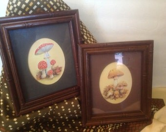 pair vintage retro l970's woodland mushroom toadstool prints matted framed under glass signed W. M. Otto