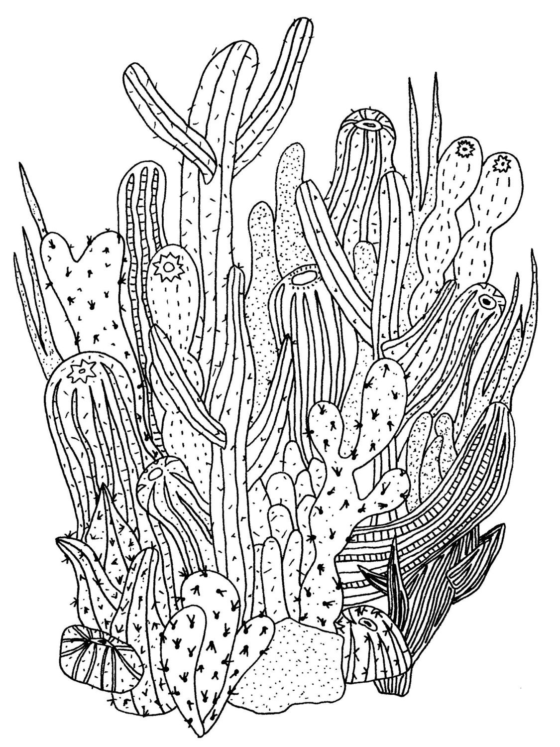 Cactus Print by gospelofwonderland on Etsy