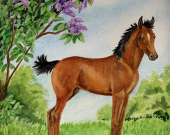 "4 Morgan Foal Notecards, w/ envelopes,  ""Little Miss May"",  5 1/2"" x 4 1/4"", Blank, Handmade, Horse LOVER GIFT, Art"