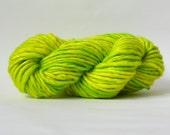 Tundra | Willow