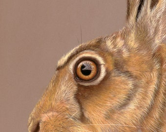 The Eyes Have It - Hare Print, Hare Art, Hares