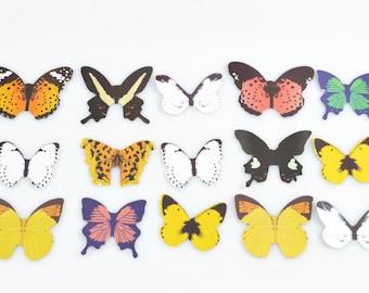 BUTTERFLY PAPER CUTOUTS (Set of 15 Butterflies) - Butterfly Paper Cutouts Set (28.2cm x 20cm)
