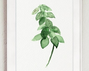 Basil Watercolor Painting, Herbs Art Print, Green Kitchen Decor, Plants, Herb Garden gift Idea