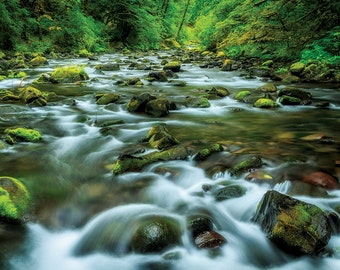 Stream from the Wahclella