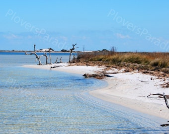 Sandy Beach Photograph // Pensacola Beach, Florida Photograph Print