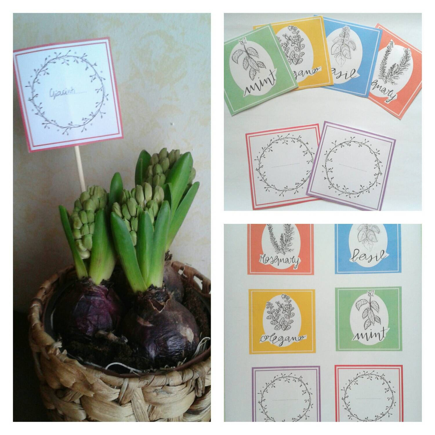 Cartellini per piante stampabili di behappycreation su etsy for Cartellini per piante