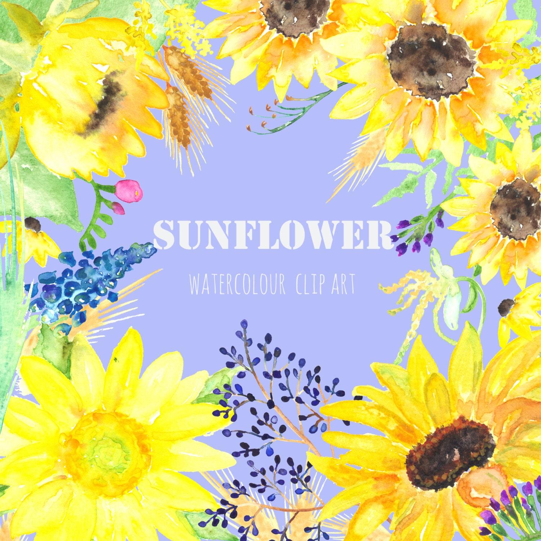 Sunflower watercolour clip art Digital Watercolor by ...
