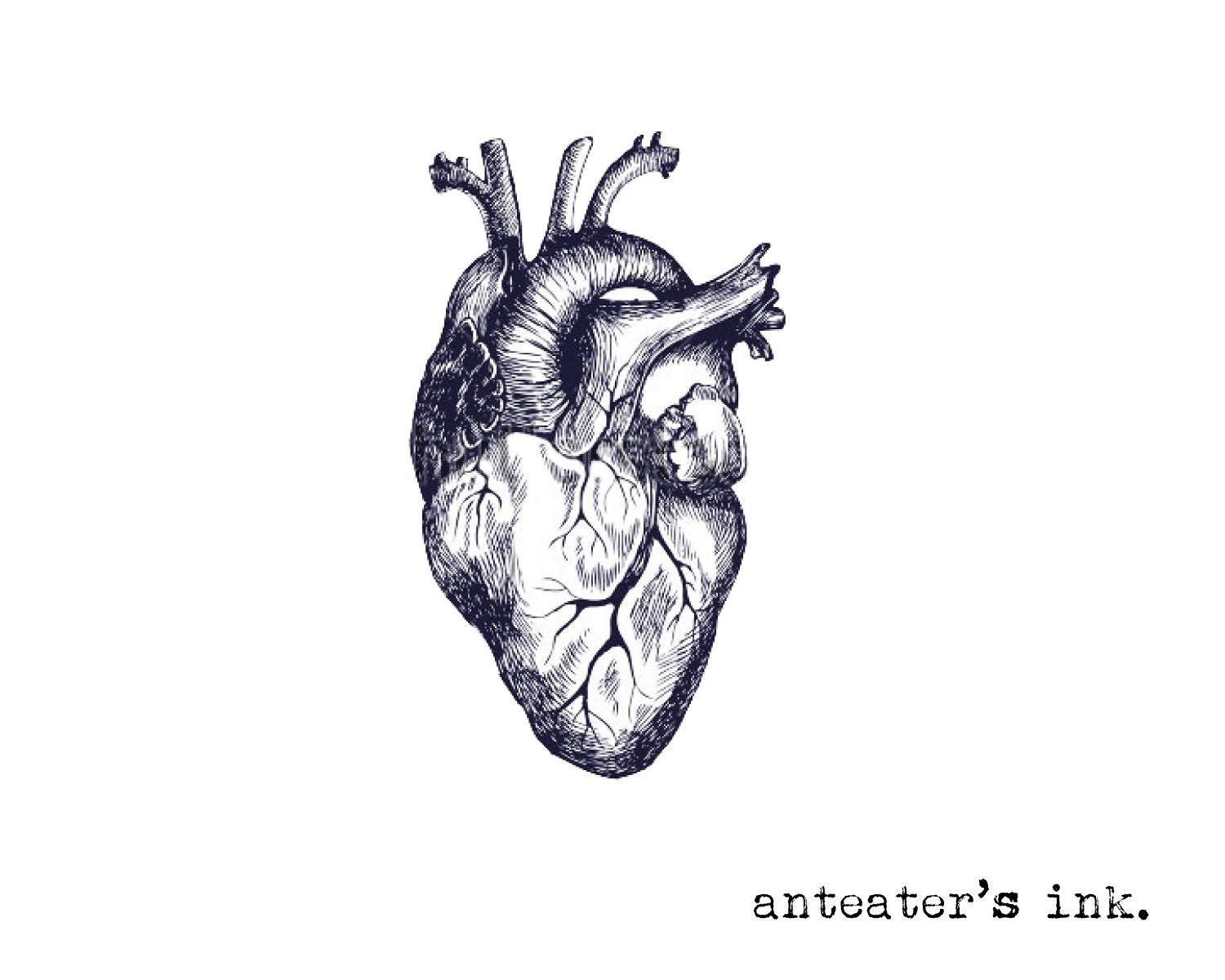 Real Heart Tattoo Drawing | www.imgkid.com - The Image Kid ...