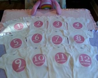 Month By Month Pink or Gray Onesies