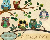 Collage Owls Scrapbook PNG Clipart Set