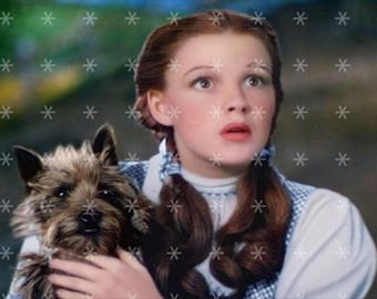 The Wizard of Oz - Dorothy & Toto -  Fabric Art Quilt Block   TWOO19- FREE SHIPPING