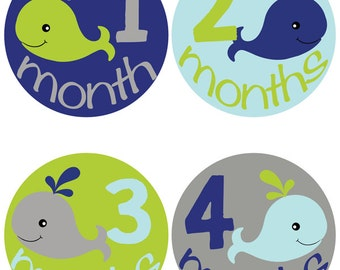 Blue & Green Whale Baby Milestone Stickers - Monthly Onesie Stickers (417)