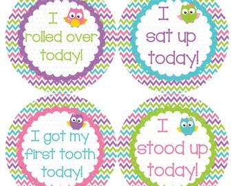 Pretty Owls Milestone Onesie Stickers - Walk Crawl Talk Eat Words Roll Over Mama Dada Baby Girl