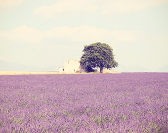 Provence Landscape Photography, Lavender Fields Flowers, Lavender Image Art Print, Purple Wall Art