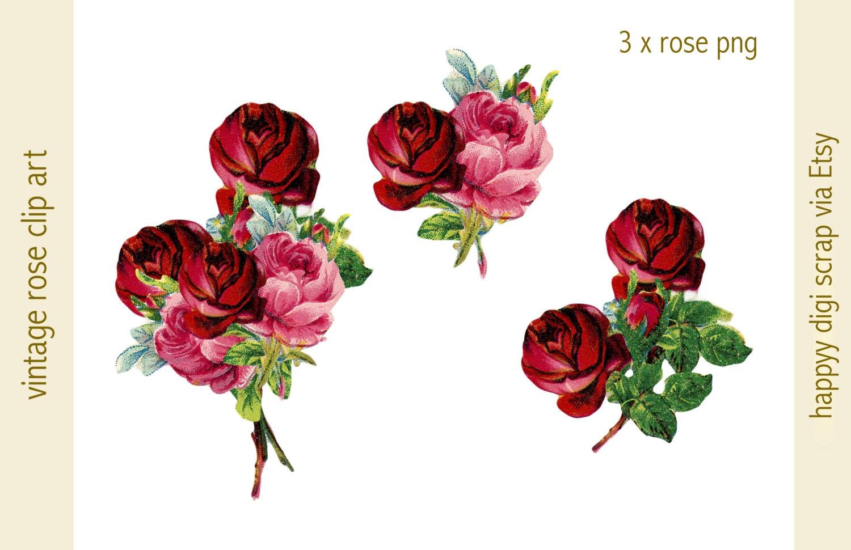 digital vintage ROSE clip art 3 png files instant download