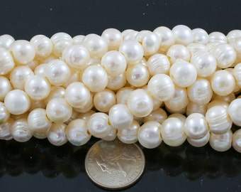 10-11mm Large Hole Freshwater  Pearl, Half strands!