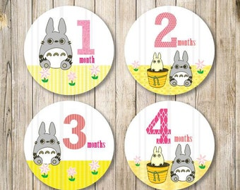 TOTORO Girl Monthly Milestones Stickers, Baby Monthly Onesies, Totoro Labels, Pink Yellow Stickers, Baby Girl Monthly Stickers, DIY Digital