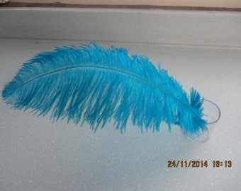 50pcs turquoise Ostrich Feather Plume for Wedding centerpieces, Samba accessories