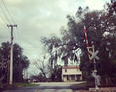 Florida Tracks FREE SHIPPING Fine art photo print Landscape Railroad Small Town Rural South Southern Moss Old Trees Lost Child Abandoned