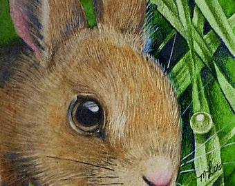Bunny Rabbit in Spring Grass Art by Melody Lea Lamb ACEO Print #185