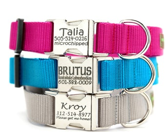 Personalized Dog Collar - All Metal Buckle Engraved with 22 Webbing Colors to Choose From