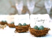 Wedding Place Cards, 3, Nest Woodland Rustic Robin Egg Blue Rustic Fairytale Classic Shabby Chic Country Theme Baby Shower, Bird Theme
