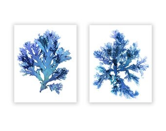 Seaweed Art Prints, Large Blue Artwork, Beach House Wall Decor, Coastal Artwork Home, Set of Two, Original Nautical Prints