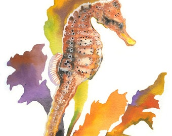 """Limited Edition GICLEE Print / """"Equine Colors"""" / Watercolor Portrait of a Seahorse"""