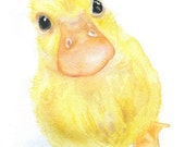 Yellow Duckling Watercolor Painting 4 x 6 Fine Art Giclee Reproduction - Nursery Art - Farm Animals
