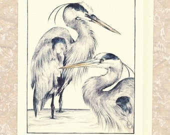 "5"" x 7"" card with Envelope Title: ""Blue Herons"""