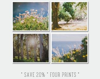 Discounted Set Print, Sale Set of Four Yellow Blue and Green Prints, Seaside Flora Prints, Botanical Decor, Landscape Nature Photo, Woods