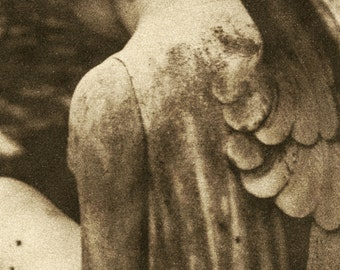 Fine art photography - Angel - Sepia