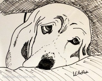 Custom Pet Portrait in Pen and Ink from Your Photo