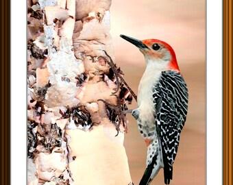 Modern Art Red-Bellied Woodpecker Birch Tree Landscape Abstract Art Print Printable Wall Decor Instant Download Original