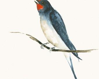 Original Watercolor Painting Swallow